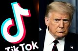 Donald Trump will Tiktok in den USA verbieten
